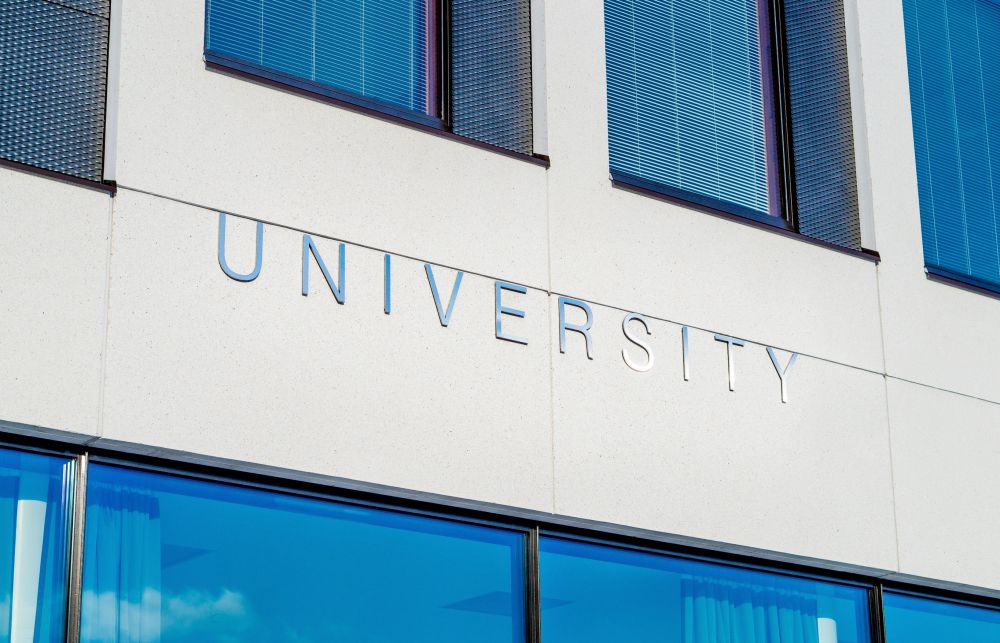 Is Higher Education a Necessary Precursor to Career Success
